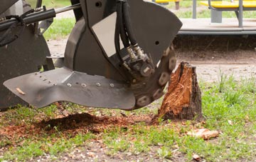 professional Marlow Common stump grinding services