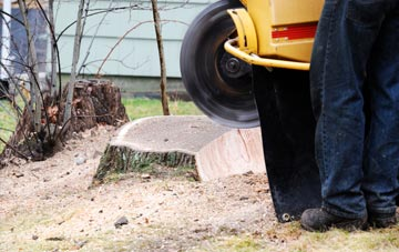 rated Marlow Common tree stump removal companies
