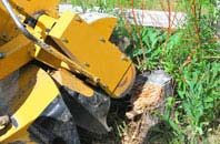 Marlow Common tree stump grinding services