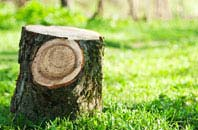 Marlow Common tree stump removal services