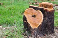 free Marlow Common tree stump removal quotes